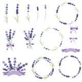 Reeks lavendelbloemen stock illustratie