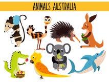Reeks Leuke beeldverhaaldieren en vogels van Australië en zijn ostrovov Kangoeroe, opossum, numbat, de Koala, EMOE, papegaai, all Royalty-vrije Stock Foto's