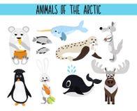 Reeks Leuke beeldverhaaldieren en vogels van het Noordpoolgebied op een witte achtergrond Ijsbeer, Noordpoolwolf, hazen, walrus,  Stock Foto