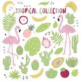 Reeks leuke de zomerpictogrammen: groene tropische bladeren, cactus en flamingo Heldere zomeraffiche Inzameling van het scrapbook royalty-vrije illustratie