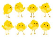 Reeks leuke kippen Stock Afbeelding