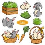 Reeks leuke landbouwbedrijfdieren en voorwerpen, vectorfamiliekonijn Stock Afbeeldingen