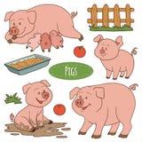 Reeks leuke landbouwbedrijfdieren en voorwerpen, vectorfamilievarkens Royalty-vrije Stock Foto