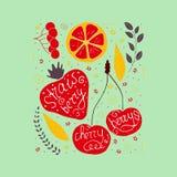 Reeks leuke vectorhand getrokken vruchten op een groene achtergrond royalty-vrije illustratie