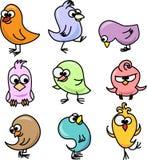 Reeks leuke vogels Stock Foto