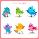 Reeks leuke vogels in vector Kleurrijke Vogels Vectorinzameling Het leuke vogels spreken Stock Foto's