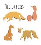 Reeks leuke vossen voor ontwerp Royalty-vrije Stock Foto