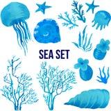 Reeks mariene die planten en dieren op witte achtergrond worden geïsoleerd Stock Foto
