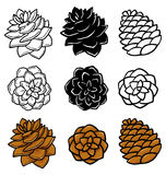 Reeks met grafische pinecones op witte achtergrond vector illustratie