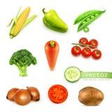Reeks met groentenillustratie Stock Fotografie