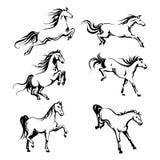 Reeks met hand-tekening grafisch van het lopen paarden Stock Fotografie