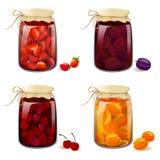 Reeks met ingeblikte vruchten en bessen Stock Fotografie