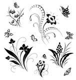 Reeks met vlinders en bloempatronen Royalty-vrije Stock Foto's