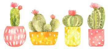 Reeks met waterverf bloeiende cactus in leuke heldere potten met vlekken en harten stock illustratie