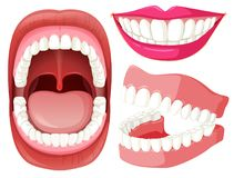 Reeks mond en tanden royalty-vrije illustratie