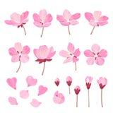 Reeks mooie die bloemen van de kersenboom op witeachtergrond wordt geïsoleerd Inzameling van roze sakura of Japanse appelbloesem, vector illustratie