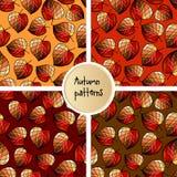 Reeks naadloze patronen met gestileerde bladeren Stock Afbeeldingen