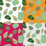 Reeks naadloze patronen van gekleurde bladeren op witte, grijze, orang-oetan Royalty-vrije Stock Fotografie