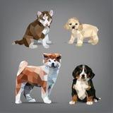 Reeks origami-stijl honden Vector illustratie Royalty-vrije Stock Fotografie