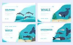 Reeks Overzeese zoogdieren De kaartreeks van de kunst dierlijke brochure de vissen in oceaan het levensmalplaatje van flyear, Web stock illustratie
