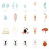 Reeks parasieten stock illustratie