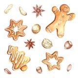 Reeks peperkoek en noten Kerstmis De hand trekt waterverfillustratie Stock Foto's