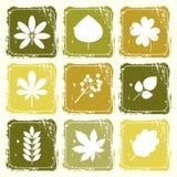 Reeks pictogrammen met bladeren Stock Foto