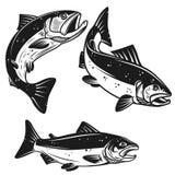 Reeks pictogrammen van zalmvissen op witte achtergrond wordt geïsoleerd die Ontwerpelement voor affiche, embleem, etiket, embleem stock illustratie