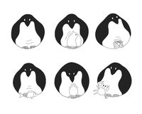 Reeks pinguïnen Royalty-vrije Stock Fotografie