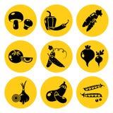 Reeks plantaardige pictogrammen Zwart silhouet op heldere gele achtergrond Vector royalty-vrije illustratie