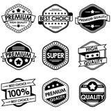 Reeks retro uitstekende kentekens en etiketten Stock Afbeeldingen