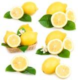 Reeks rijpe geïsoleerden citroenvruchten royalty-vrije stock fotografie