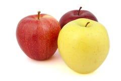 Reeks rode en gele appelen Stock Afbeeldingen