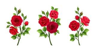 Reeks rode rozen Vector illustratie Stock Afbeelding