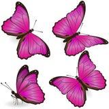 Reeks roze realistische vlinders die op witte achtergrond wordt geïsoleerd Vector grafiek stock illustratie