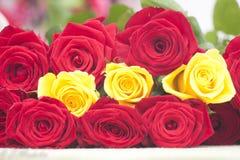 Reeks rozen Stock Fotografie