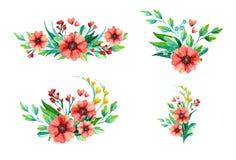 Reeks Samenstellingen - bloemen in waterverfstijl Geïsoleerdj op witte achtergrond vector illustratie