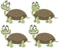 Reeks schildpadden Stock Afbeelding