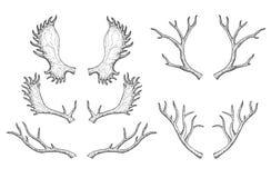 Reeks silhouetten van herten en Amerikaanse elandenhoornen Hand getrokken illustratie Stock Fotografie