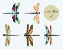 Reeks silhouetten van libellen Royalty-vrije Stock Foto