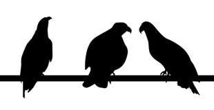 Reeks silhouetten van snel het leven gevaarlijke adelaar op witte Backg stock illustratie