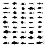 Reeks silhouetten van vissen Stock Foto