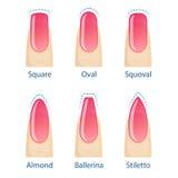 Reeks spijkersvormen stock illustratie