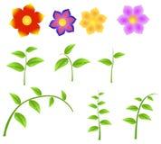Reeks Stammen met bloemen, ontwerpelement voor de lente Royalty-vrije Stock Afbeeldingen