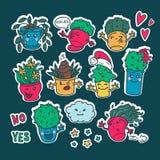 Reeks stickers van de bloempotten van kawaii leuke Emoji Emoties van beeldverhaalkarakters met een wit overzicht stock afbeeldingen