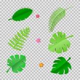 Reeks tropische bladeren en bloemen in trandy document besnoeiingsstijl De wildernisinstallaties van de ambachtzomer met schaduw  Stock Foto