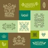 Reeks uitstekende emblemen, tekens, affiches in lineair Royalty-vrije Stock Afbeeldingen