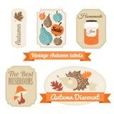 Reeks uitstekende etiketten van de de herfstdaling, markeringen, stickers, Royalty-vrije Stock Foto's