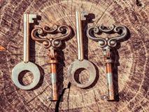 Reeks uitstekende sleutels Royalty-vrije Stock Afbeelding