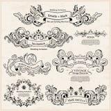 Reeks Uitstekende Victoriaanse ornamenten Het ontwerp van het huwelijk Royalty-vrije Stock Foto